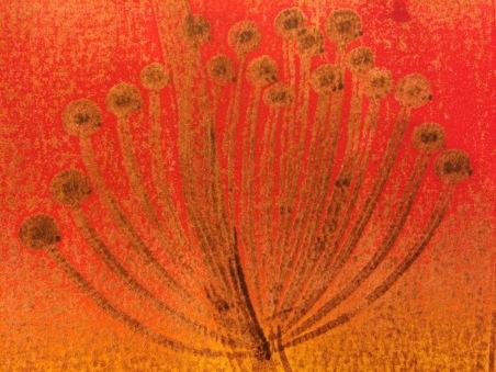 Mair Richards - Umbillifer red